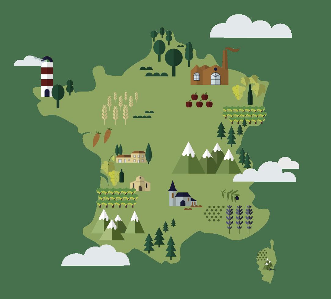 Les cépages du cognac comparé à la France